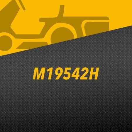 M19542H