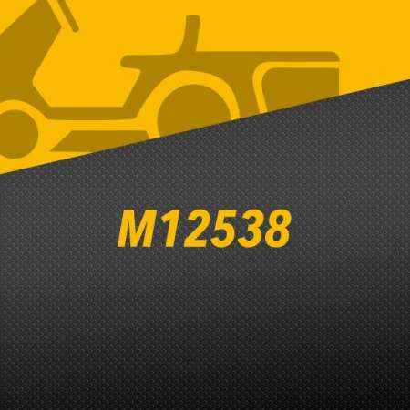M12538