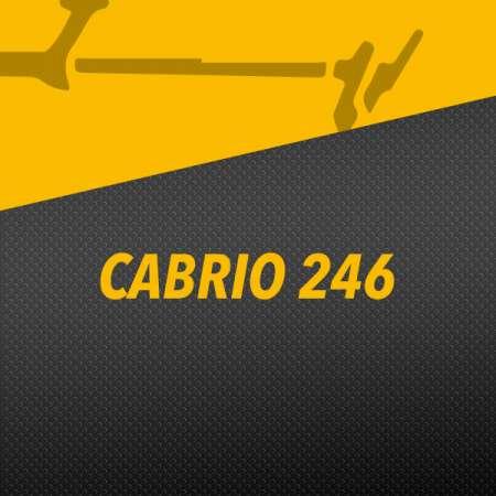 CABRIO 246
