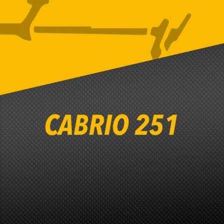 CABRIO 251