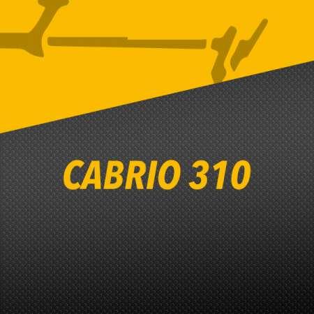 CABRIO 310