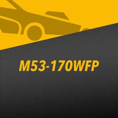 M53-170WFP